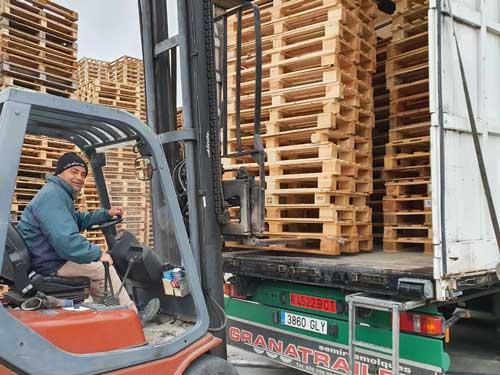 descarga-palets-camiones